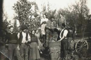 Vendanges près d'Evian en 1929